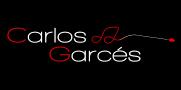 Carlos Garcés Director de orquesta – Orchestra Conductor